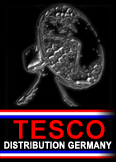 tesco_germany_logo