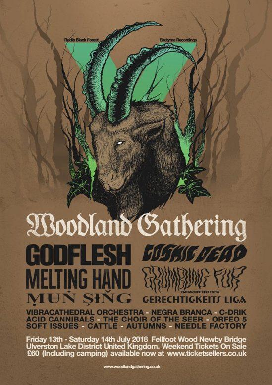 Woodland.Gathering.V